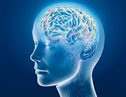 Beynimize Yararlı 9 Alışkanlık