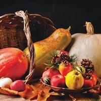 Meyve, Sebze Kanserden Korumuyor