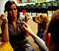 Çocukların Psikolojik Tedavisinde Hayvanlar Kullanılıyor